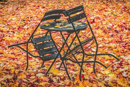 autumn-1770470__340